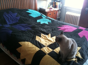 """My First Quilt:  """"Amish"""" Bear's Paw"""
