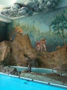 Ronan pool